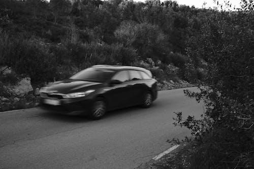 Безкоштовне стокове фото на тему «автомобіль, автомобільний, асфальт»