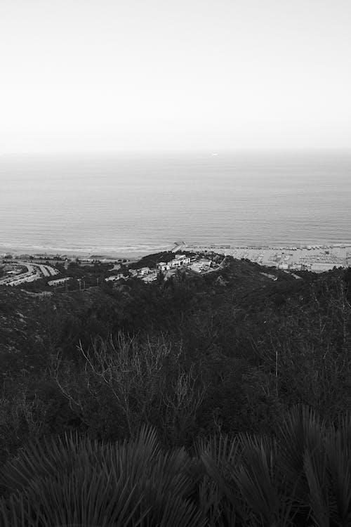 Black and White Landscape of Coastline