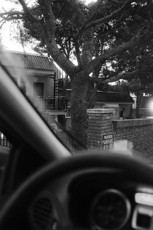Foto profissional grátis de automóvel, carro, dentro de casa