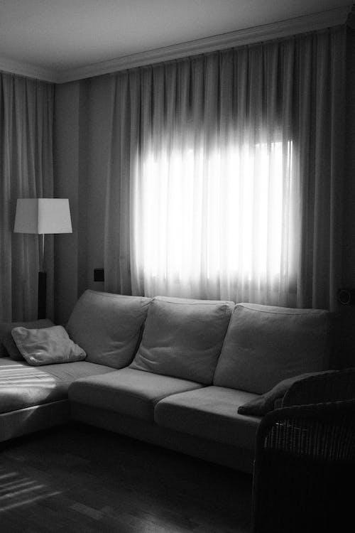 Photos gratuites de à l'intérieur, architecture, canapé