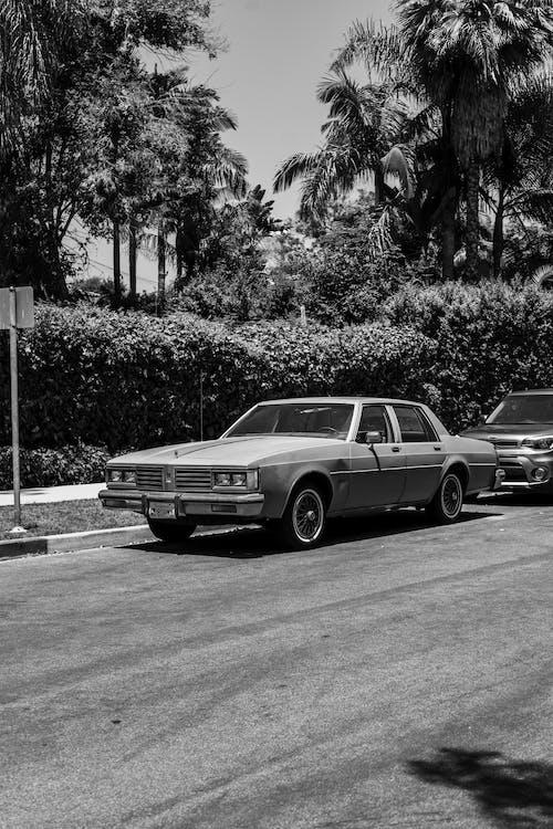 Бесплатное стоковое фото с автомобиль, автостоянка, асфальт