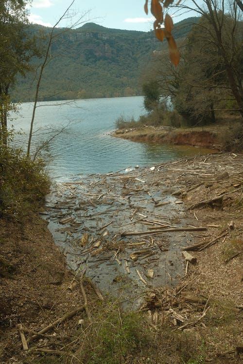 Бесплатное стоковое фото с активный отдых, бедствие, вода