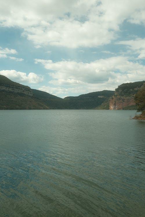 Бесплатное стоковое фото с вода, гора, дерево