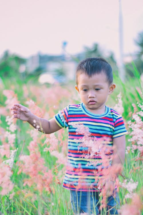 Boy Walking on Bush-covered Field Selective Focus Photo