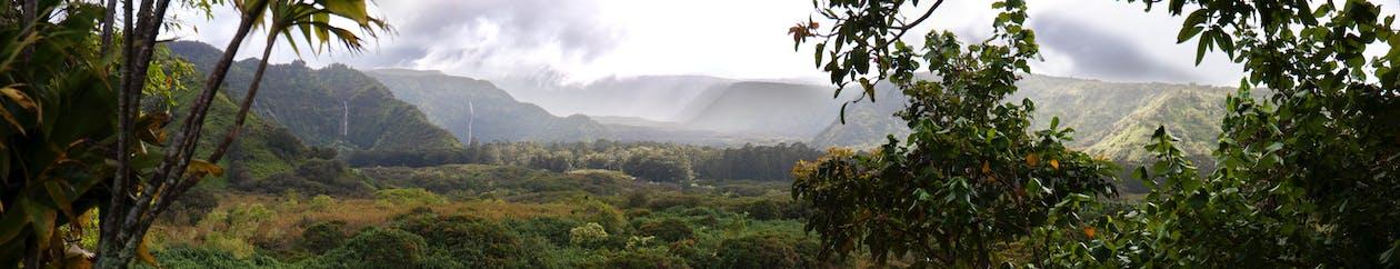 anlegg, fjell, hawaii