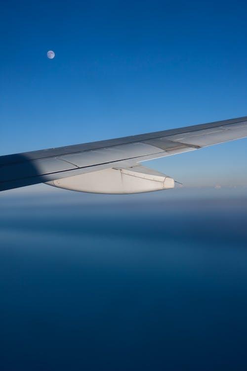 akşam, ay, kanat, Mavi gökyüzü içeren Ücretsiz stok fotoğraf