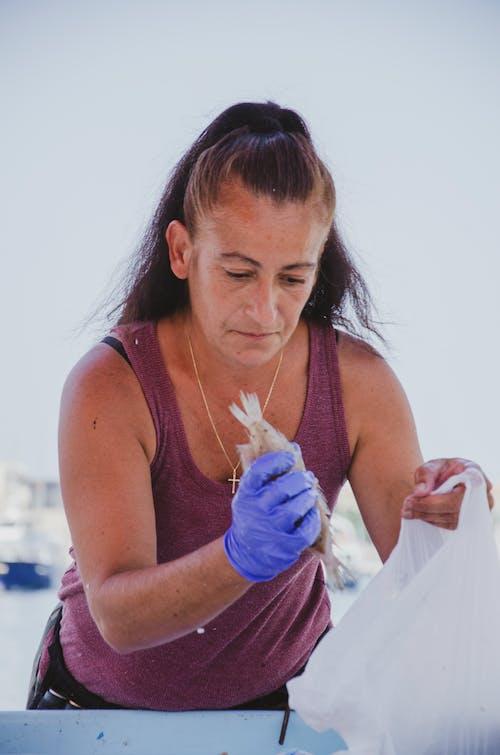 Free stock photo of artist, fisherman, marseille