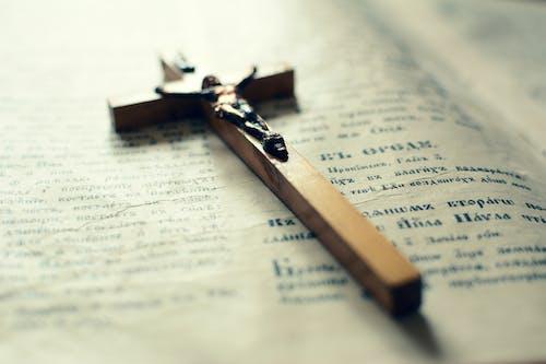 Immagine gratuita di albero, archivio storico, battesimo, bibbia