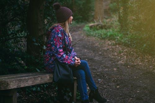 公園, 冷, 坐, 天性 的 免費圖庫相片