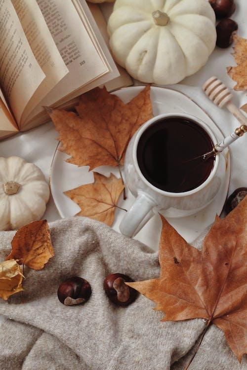 Foto stok gratis Book, cangkir teh, daun