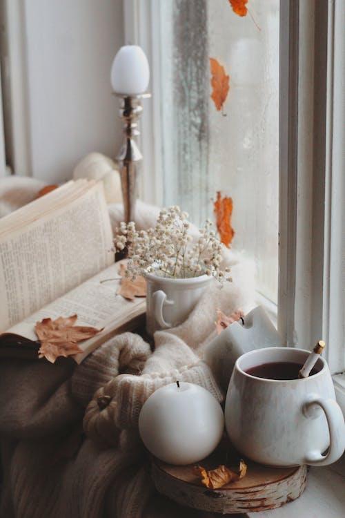 Foto stok gratis ambang jendela, Book, cangkir teh