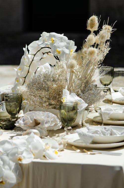 beyaz, buket, Çiçekler içeren Ücretsiz stok fotoğraf