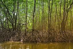 Les Rives  Authentic river exp