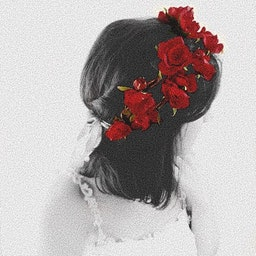 Carolina Rose Covet