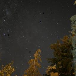 ローアングル 夜 夜空の無料の動画素材