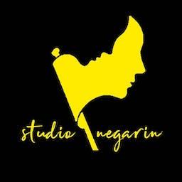 Studio Negarin