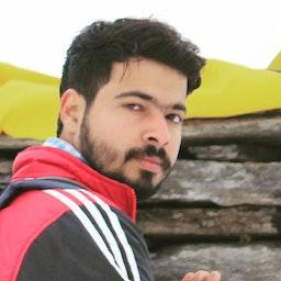 Vishwajeet  Singh Rajput