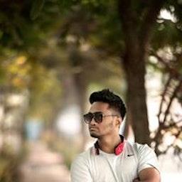 Harshal Palvi