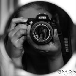 クッキー 木の人 白黒の無料の写真素材