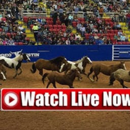 Live! NFR National Finals Rodeo 2020 Live Stream