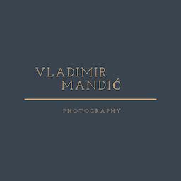 Vladimir Mandic