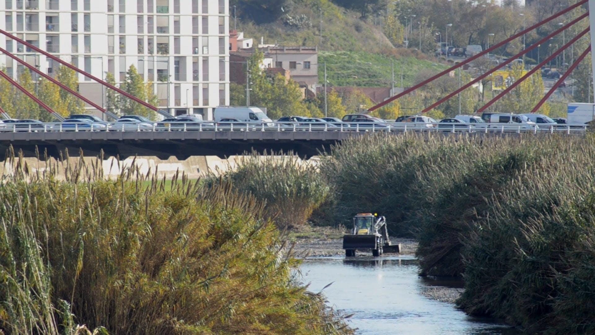 Cars On A Bridge