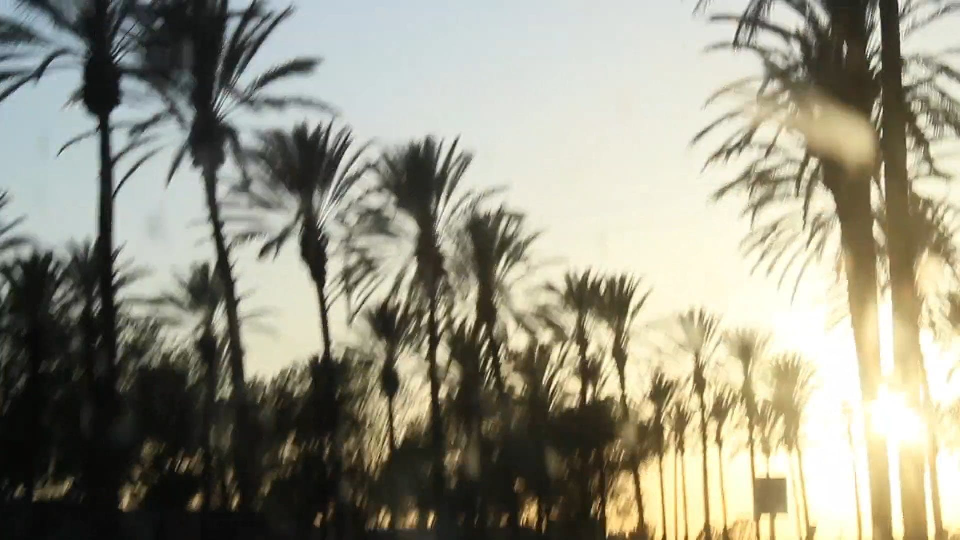 A View Of Sunset While Driving