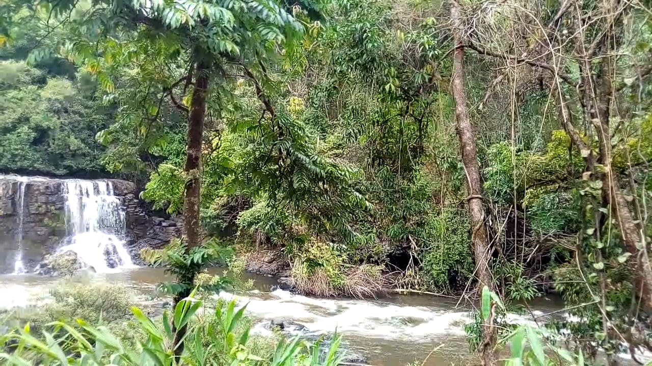 Video Of Waterfalls