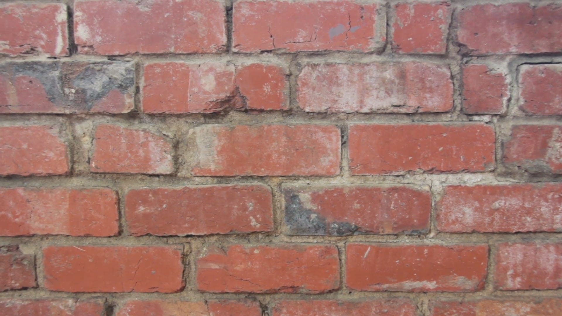 Close-Up Video Of Brickwall