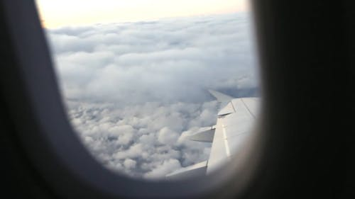 View From Aircraft Wing