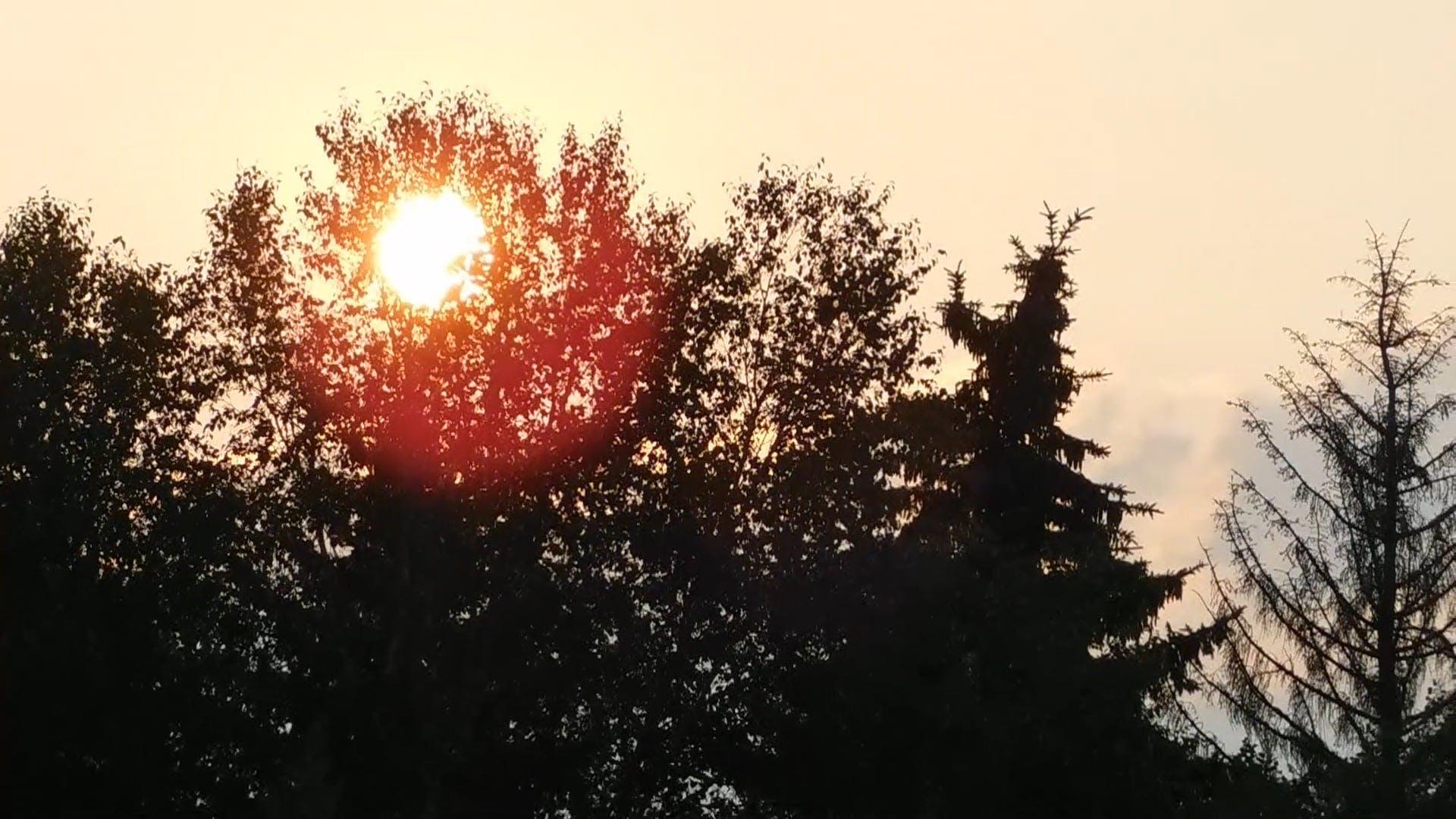 Video Of Sunset