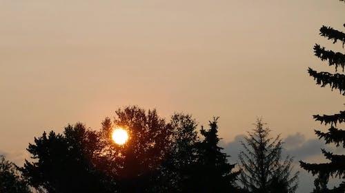 Beauty of Sunrise Video