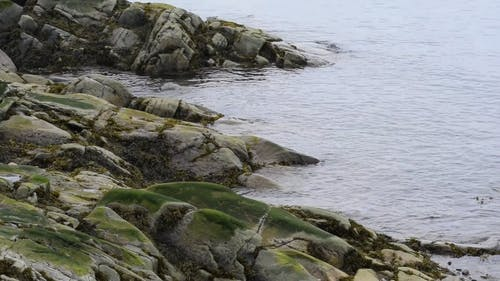 Video of Rocky Shore