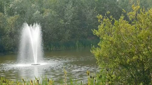 The Lake With Fountain