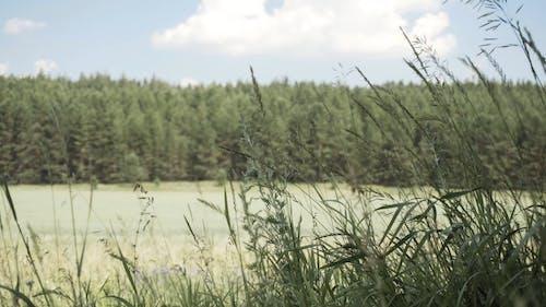 View Of Vast Landscape