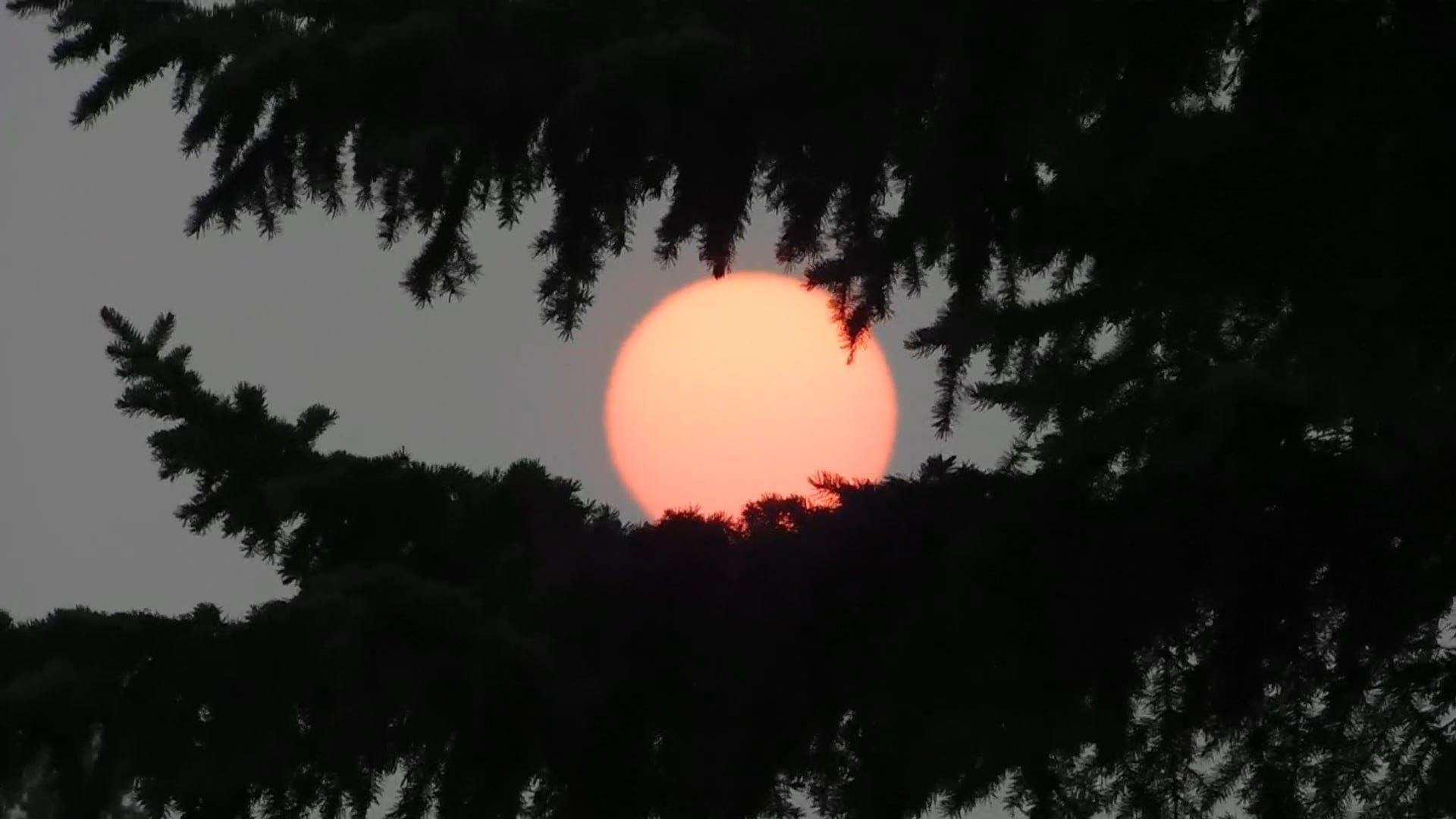 Beautiful Red Sun