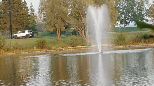 Lake With A Fountain