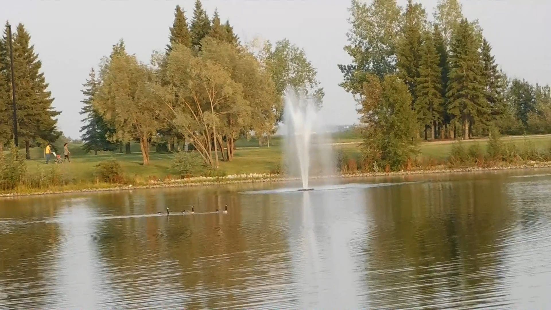 A Lake In The Park With A Fountain