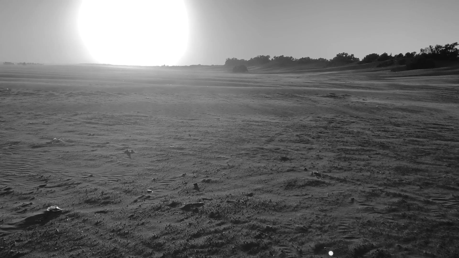 Black And White Video Of Field