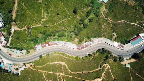 Drone View Of A Road Between Green Fields