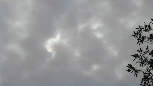Dark Clouds Before The Rain