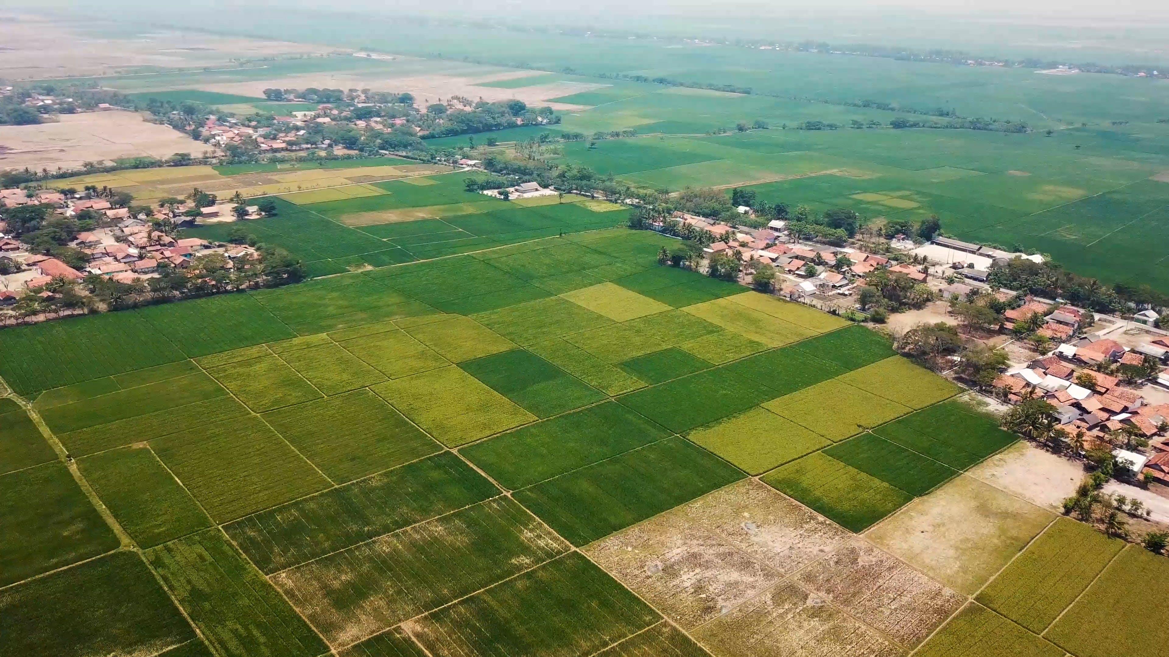 A Vast Agricultural Land