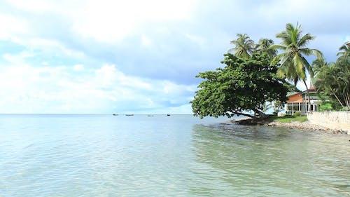 A Beautiful Beach Resort