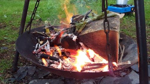 A Burning Firewood
