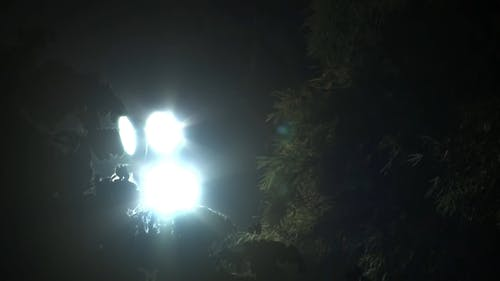 Light Glare