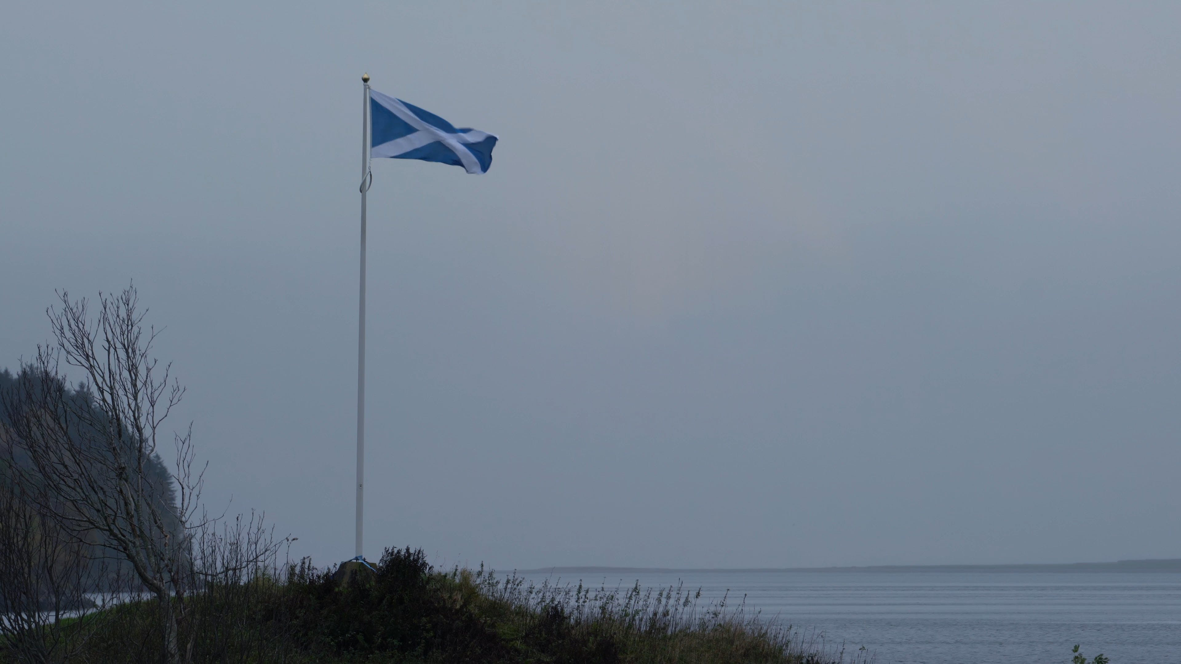 A Scottish Flag