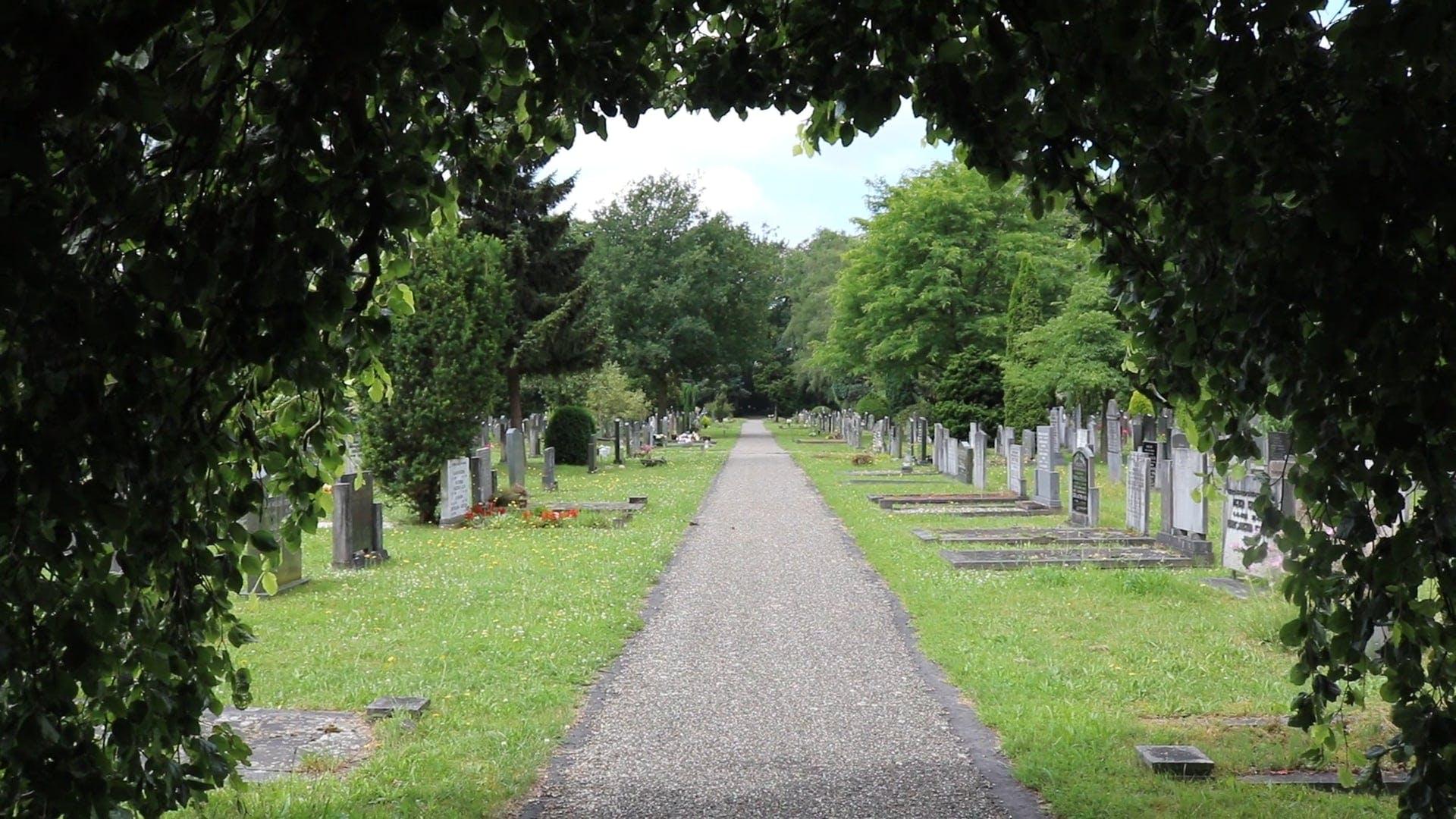 A Simple Memorial Park