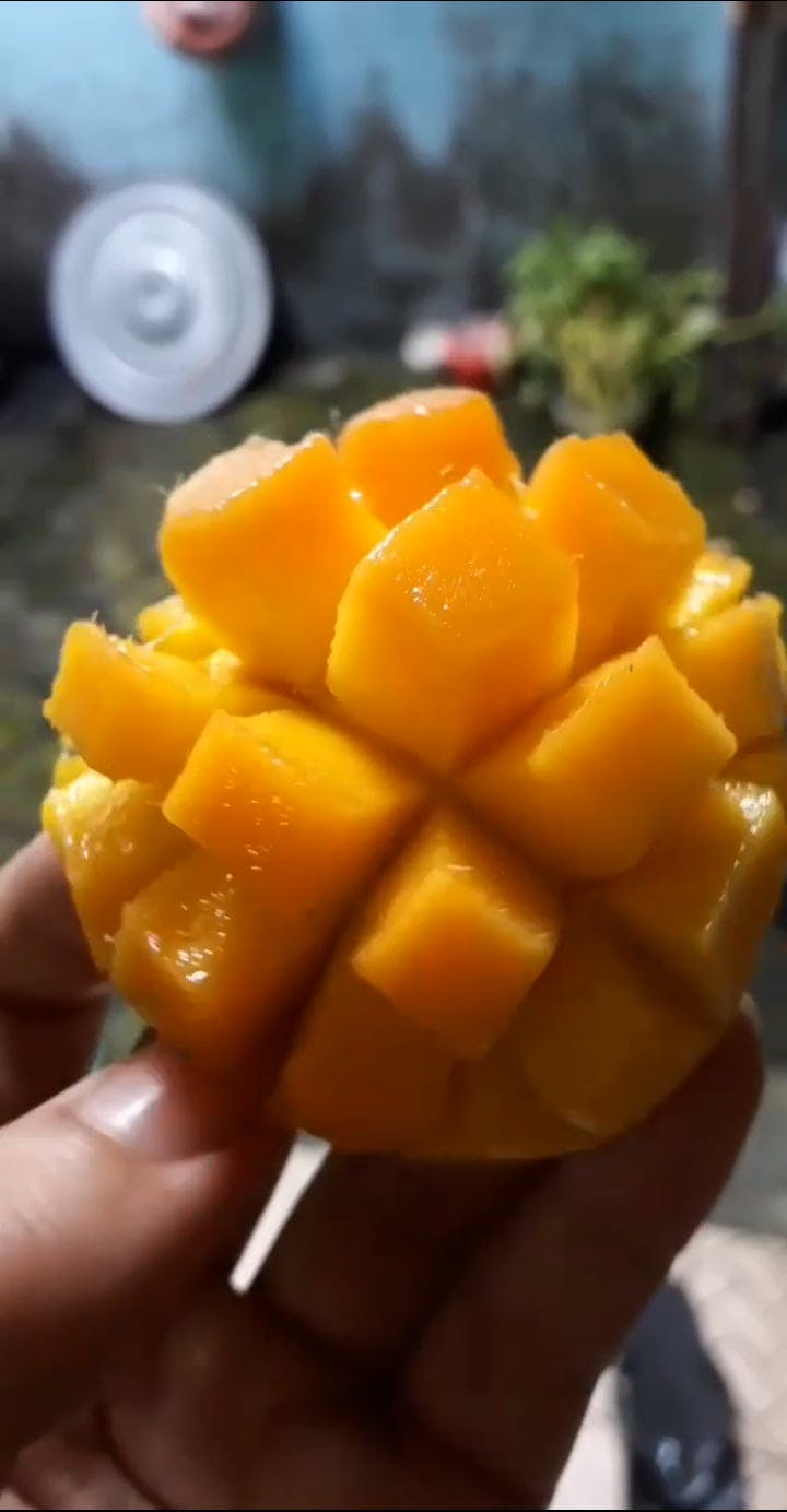 A Delicious Yellow Mango