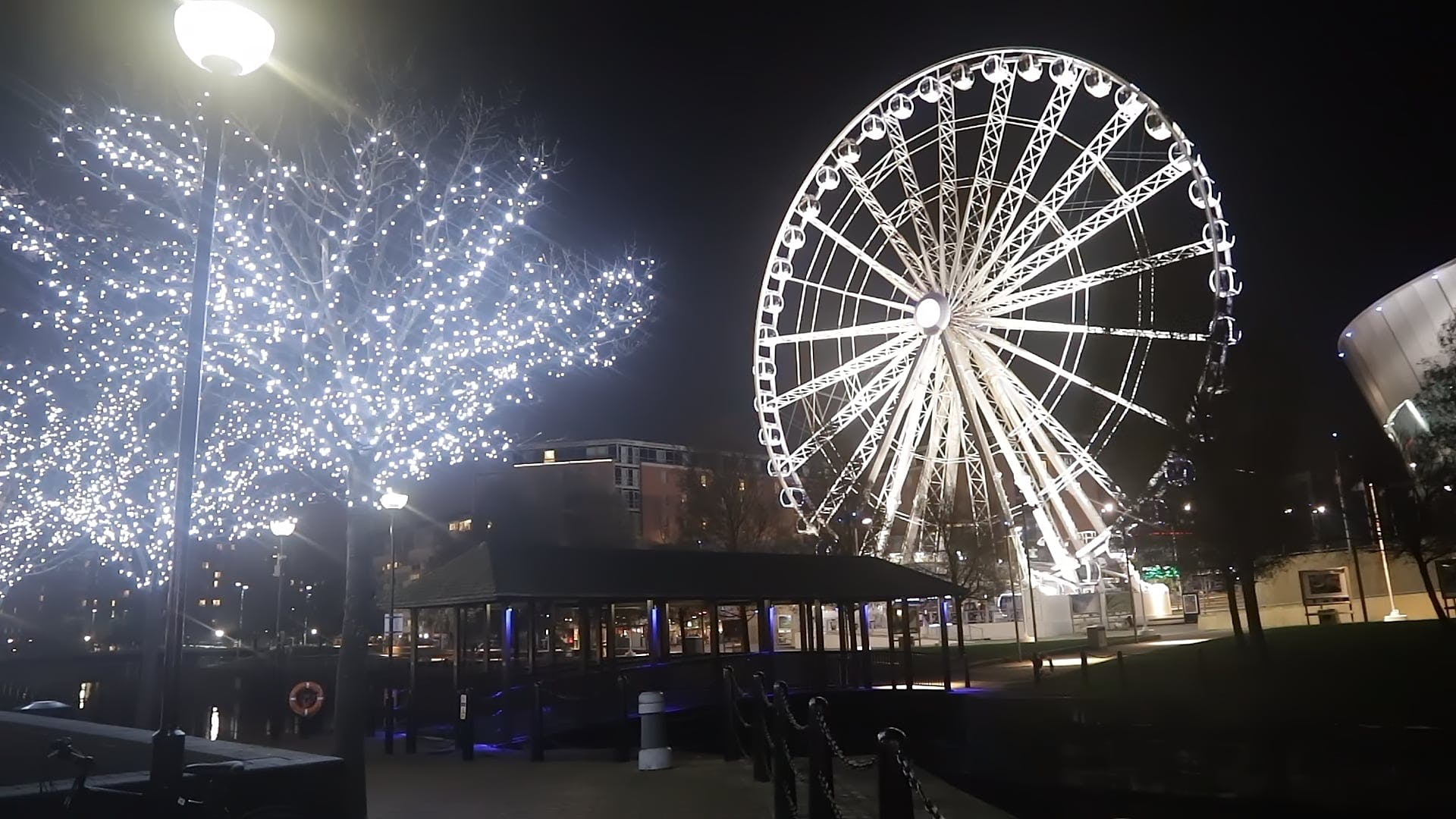 An Illuminated Tree And Ferris Wheel