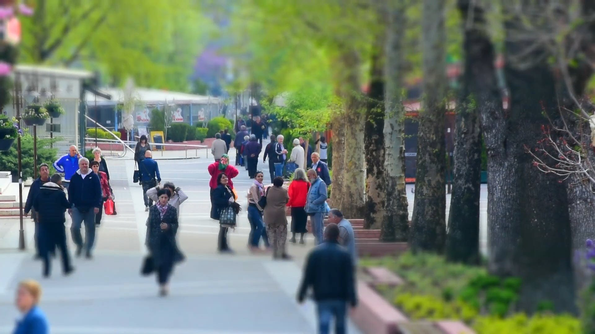People Walking In The Park In Timelapse Mode